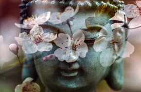 buddha-1279902_960_720