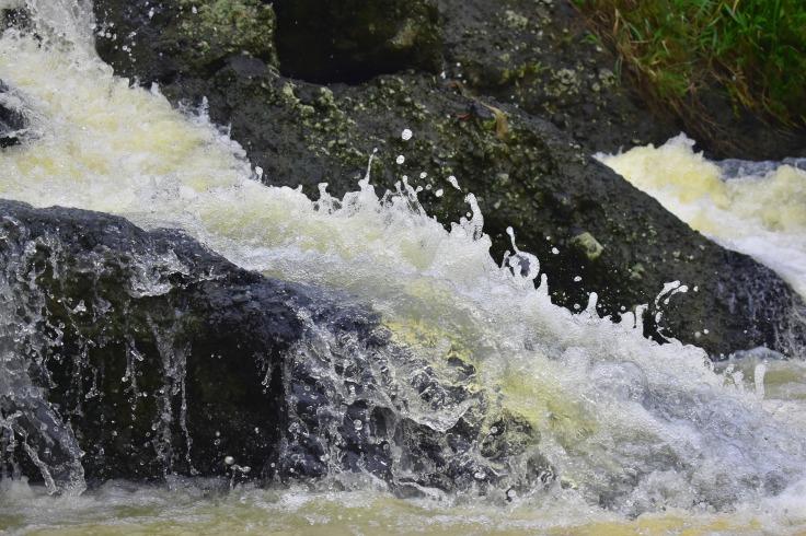 splash-3097885_1920